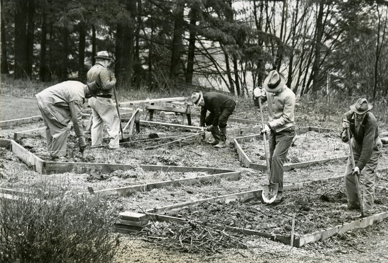 1947 Rose Garden 3.tif