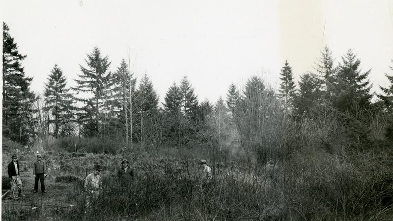 1946 Rose Garden 1.tif