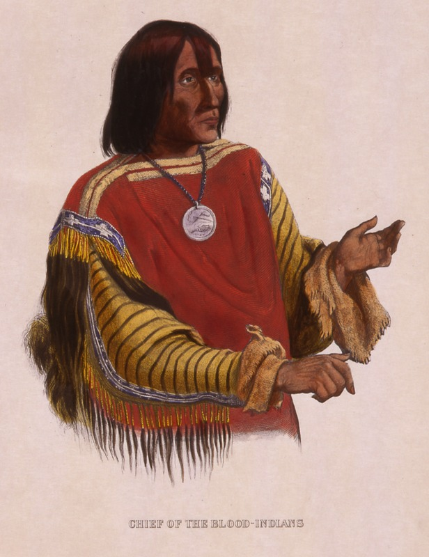 Chief of the Blood Indians