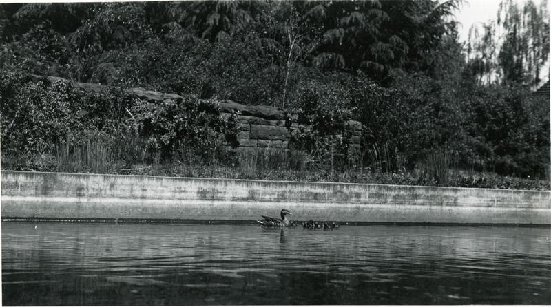 1947 Reflecting Pool 1.tif