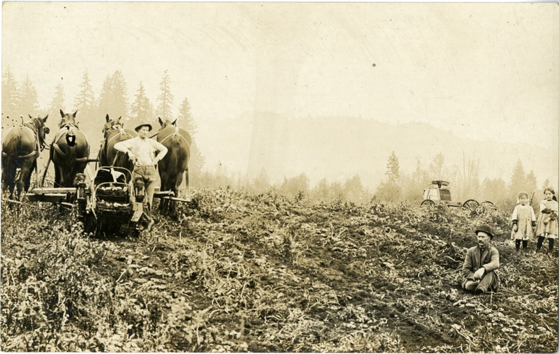 Potato farmers.