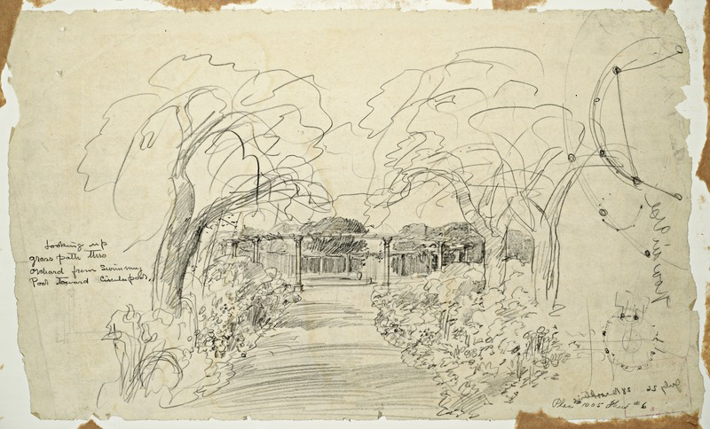 Orchard sketch