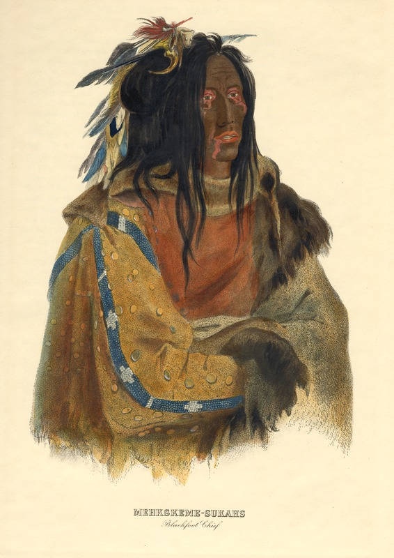 Mehkskeme-Sukahs, Blackfoot Chief